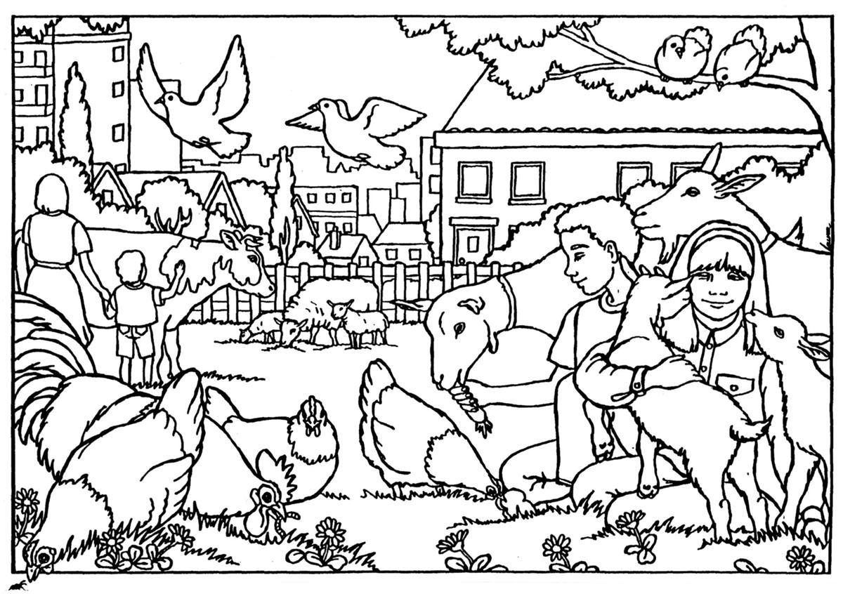 Kinderboerderij Enschede Noord